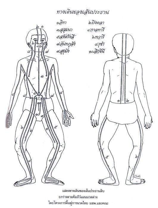 thai foot massage  u0026 reflexology